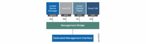nfx250-management_bridge